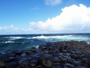 The Giant's Causeway, on a rare sunny day!